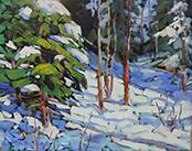 16-19---Blue-Snow-Shadows_thumb